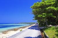 沖縄県 備瀬の海岸