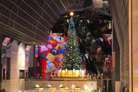 京都府 京都駅ビルクリスマスイルミネーション