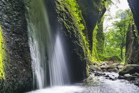 兵庫県 シワガラの滝