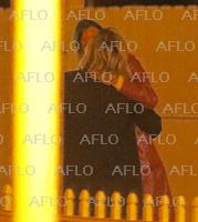 クロエ・グレース・モレッツが女性モデルのケイト・ハリソンとキス