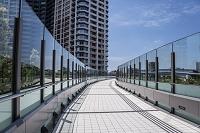 新豊洲の高層マンションと歩道