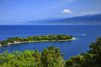 静岡県 新緑の大瀬崎と富士山