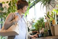 花屋で鉢植えを選ぶシニア日本人女性