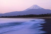 静岡県 沼津市 富士山と海
