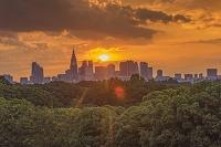 東京都 新宿ビル群と夕日