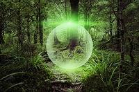 CG 森の中の球体