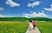 初夏の高原 ピクニックの少女