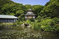 神奈川県 光明寺 大聖閣