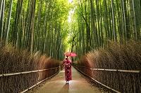 京都府 嵐山の竹林と着物の女性