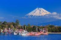 静岡県 大瀬祭り 大瀬崎に集結する装飾された漁船と富士山