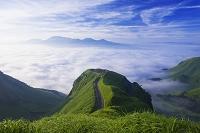 熊本県 天空の道