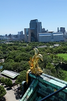 大阪府 大阪城公園と鯱