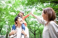 新緑と日本人家族