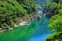徳島県 吉野川 小歩危峡