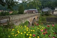 大分 院内の石橋