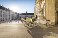 オーストリア ウィーン 馬車