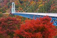 茨城県 竜神大吊橋