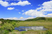 長野県 ビーナスライン 八島ヶ原湿原