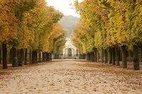 オーストリア ウィーン