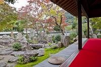 兵庫県 安養院庭園