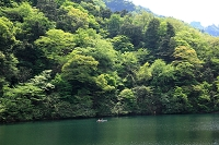 群馬県 新緑の妙義湖
