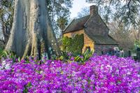 オーストラリア 春のフィッツロイ庭園とキャプテン・クックの家