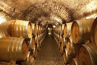 イタリア ヴェネト州 ワインセラー