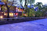 京都 夕暮れの新緑の祇園 白川