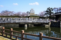 姫路 姫路城 桜田門橋から大天守閣
