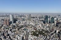 東京都 港区 六本木・赤坂周辺