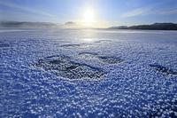 北海道 凍る屈斜路湖とフロストフラワー
