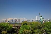 東京都 新緑のお台場の自由の女神とレインボーブリッジ