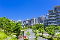 東京都 新興住宅地