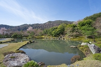 京都市 天龍寺