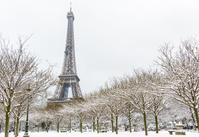 フランス  パリ  雪景色