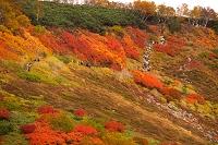 北海道 赤岳登山道の登山客