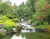 京都府 退蔵院庭園