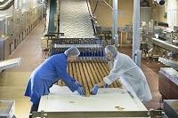 ビスケット工場で働く人々