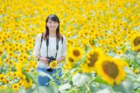 ヒマワリ畑に立つ日本人女性カメラマン