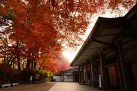 岩手県 平泉町 中尊寺