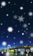 雪のレインボーブリッジ夜景