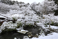 京都府 実相院 雪景色の池泉回遊式庭園