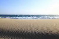 静岡県 伊豆白浜 砂浜の風紋と海