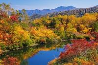 北海道 紅葉の式部沼より東大雪(音更山)の山並 大雪高原沼