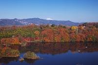 静岡県 紅葉の一碧湖と富士山