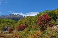 長野県 乗鞍高原