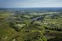 ボツワナ  オカバンゴ湿地帯