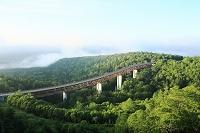 北海道 三国峠の松見大橋と朝霧