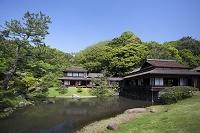 神奈川県 神奈川 横浜 三溪園