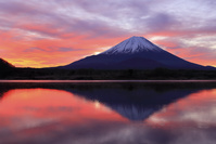山梨県 正月の精進湖より望む富士山と朝焼け